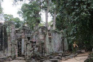 Templi-di-Angkor-Cambogia-40-Zainoinspalla.org_