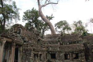 Templi-di-Angkor-Cambogia-43-Zainoinspalla.org_