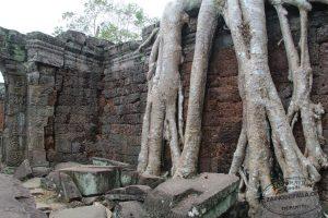 Templi-di-Angkor-Cambogia-50-Zainoinspalla.org_