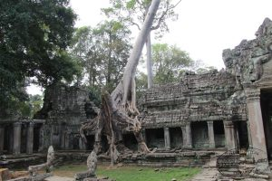 Templi-di-Angkor-Cambogia-53-Zainoinspalla.org_